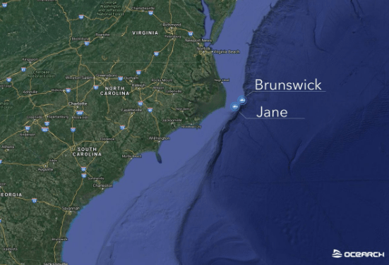Two Young Great White Sharks Stop By The Outer Banks Obx Today