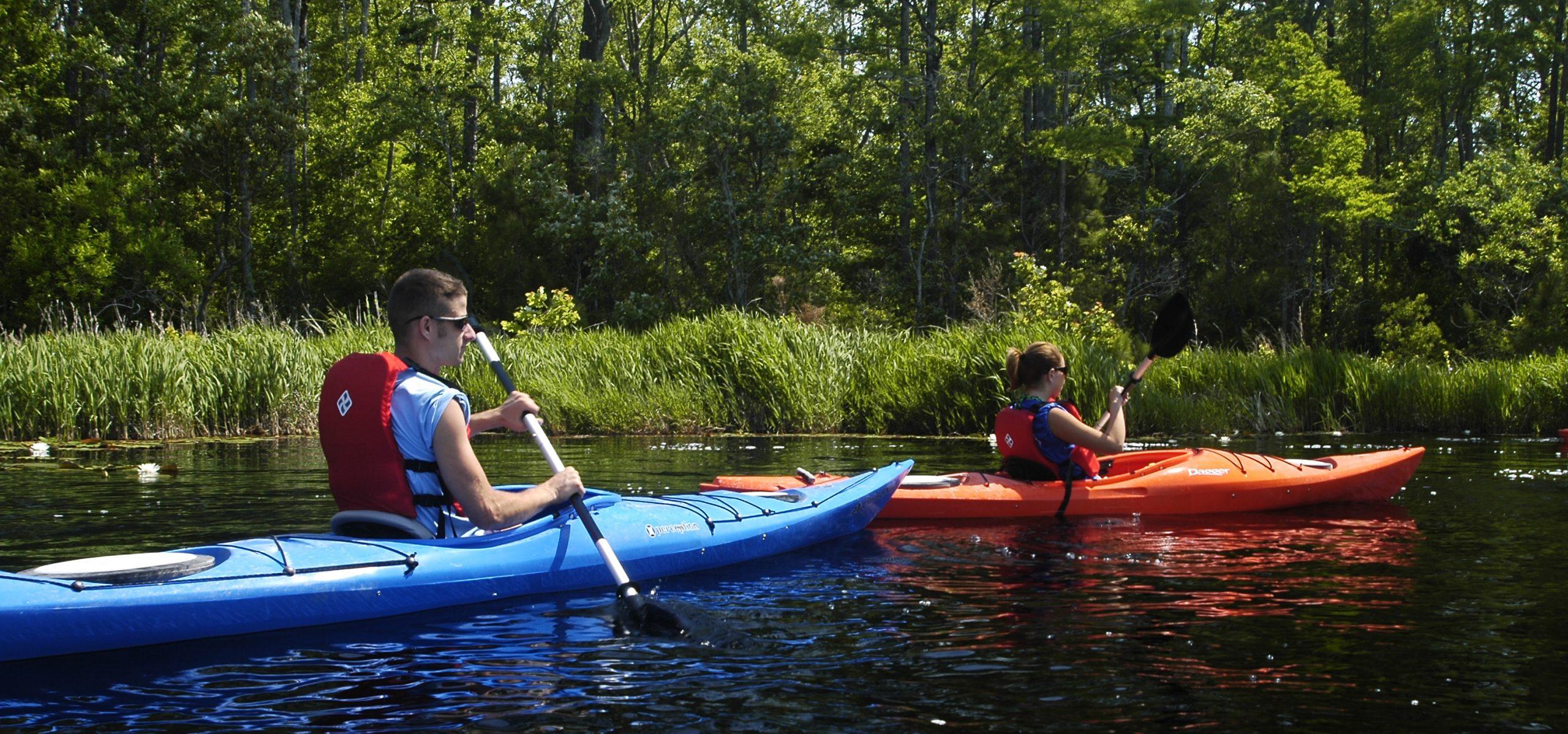 orange and blue kayaks at the Alligator River National Wildlife Refuge on the Outer Banks