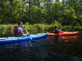Blue and orange kayaks on the Alligator River in the Outer Banks